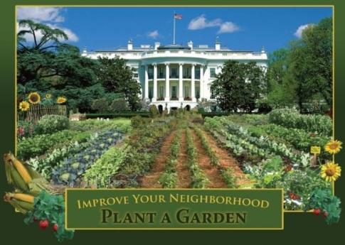http://www.honestinformation.com/wp-content/uploads/2012/01/white-house-vegetable-garden.jpg